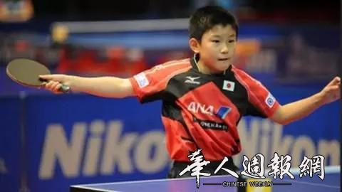 日本华裔乒乓神童,兑现诺言战胜中国!
